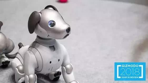 robot2018122404