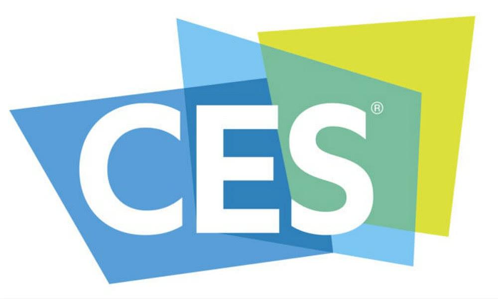 CES0113-1