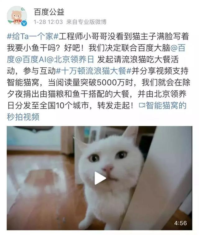 cat2019013010
