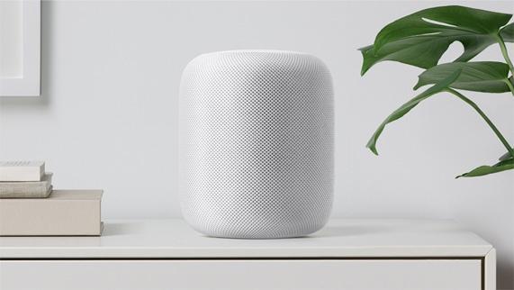 apple2019022004