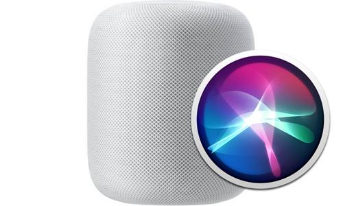 apple2019022006