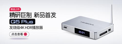 wangsu2019022703