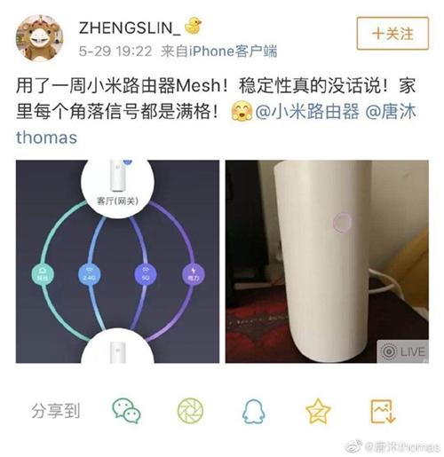 mesh060502