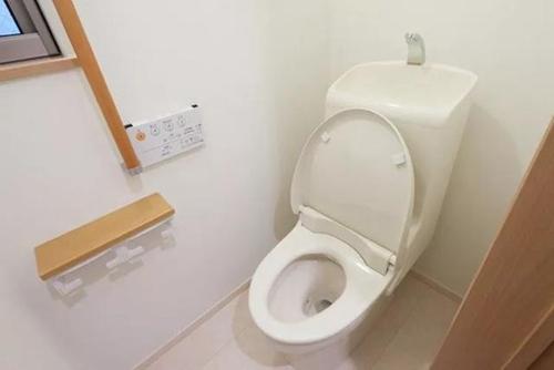 toilet081412