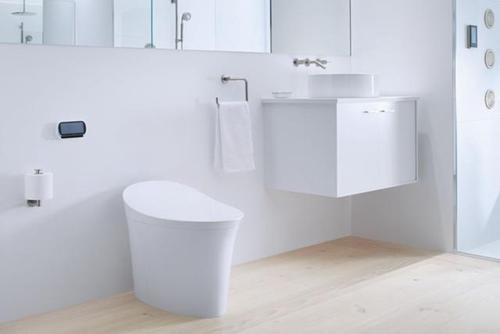 toilet081414